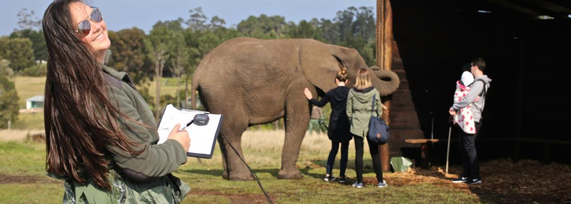 Collecting behavioral data at an elephant park in South Africa in 2015