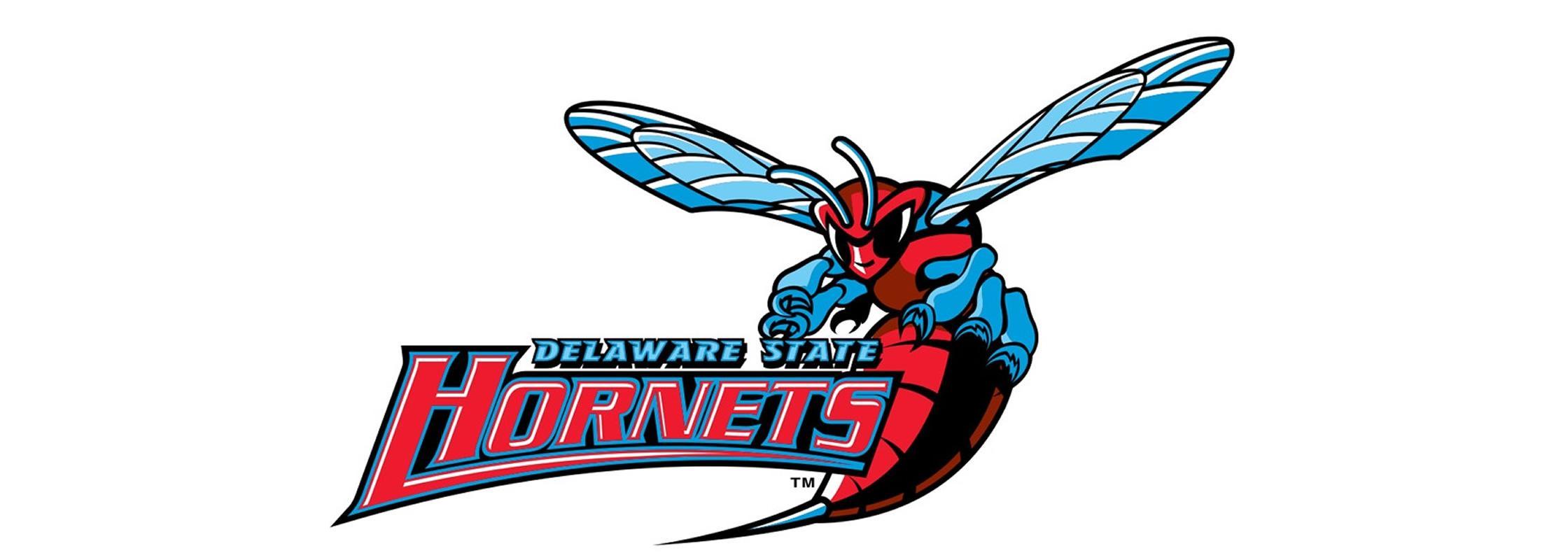 DSU Hornets logo