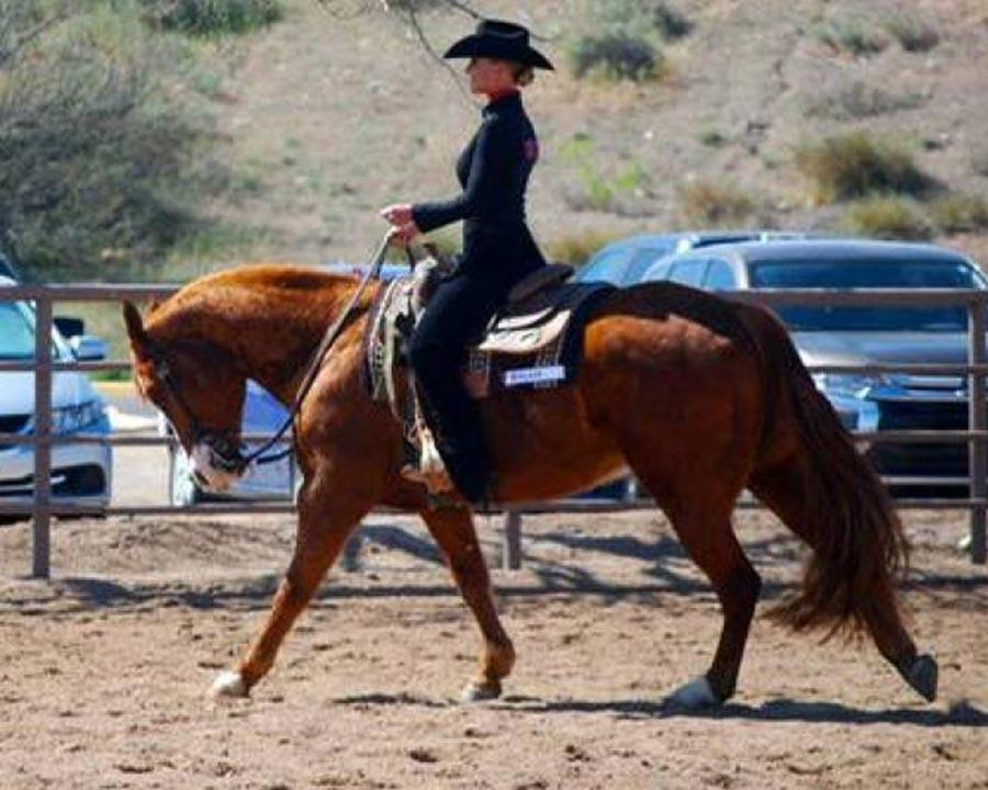 Women's Equestrian