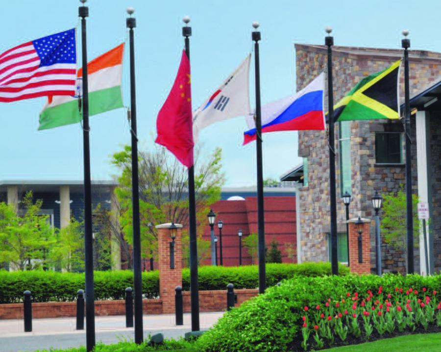 Flags at DSU