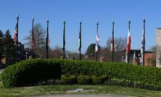 DSU entrance flags