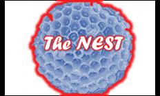the Hornet Nest