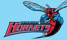DSU Hornets