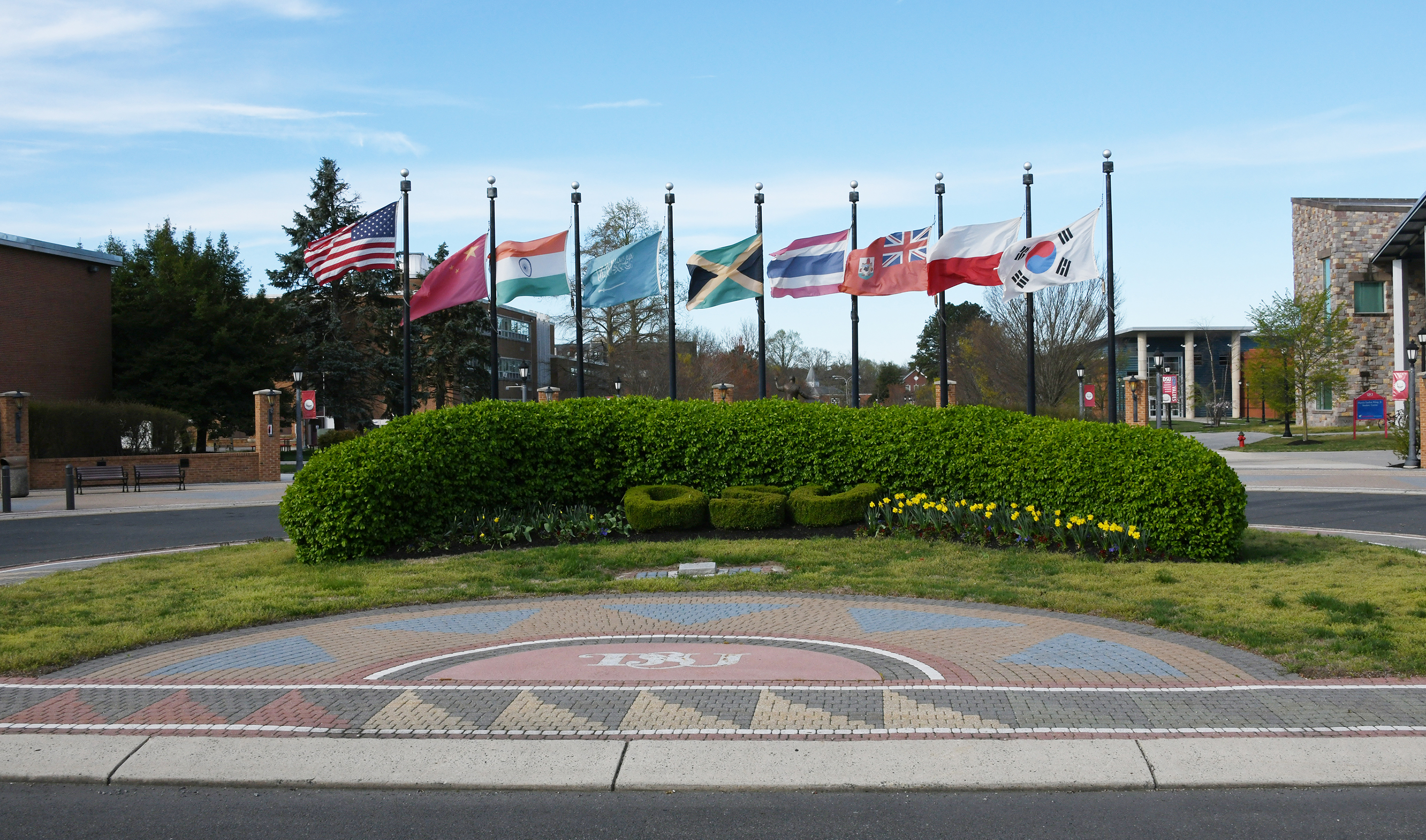 DSU Flagpoles