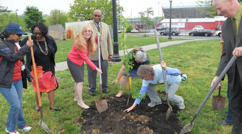 <p>State Sen. Stephanie Hansen (standing in center with shovel) helps other in planting a new tree outside of the Martin Luther King Jr. Student Center.</p>